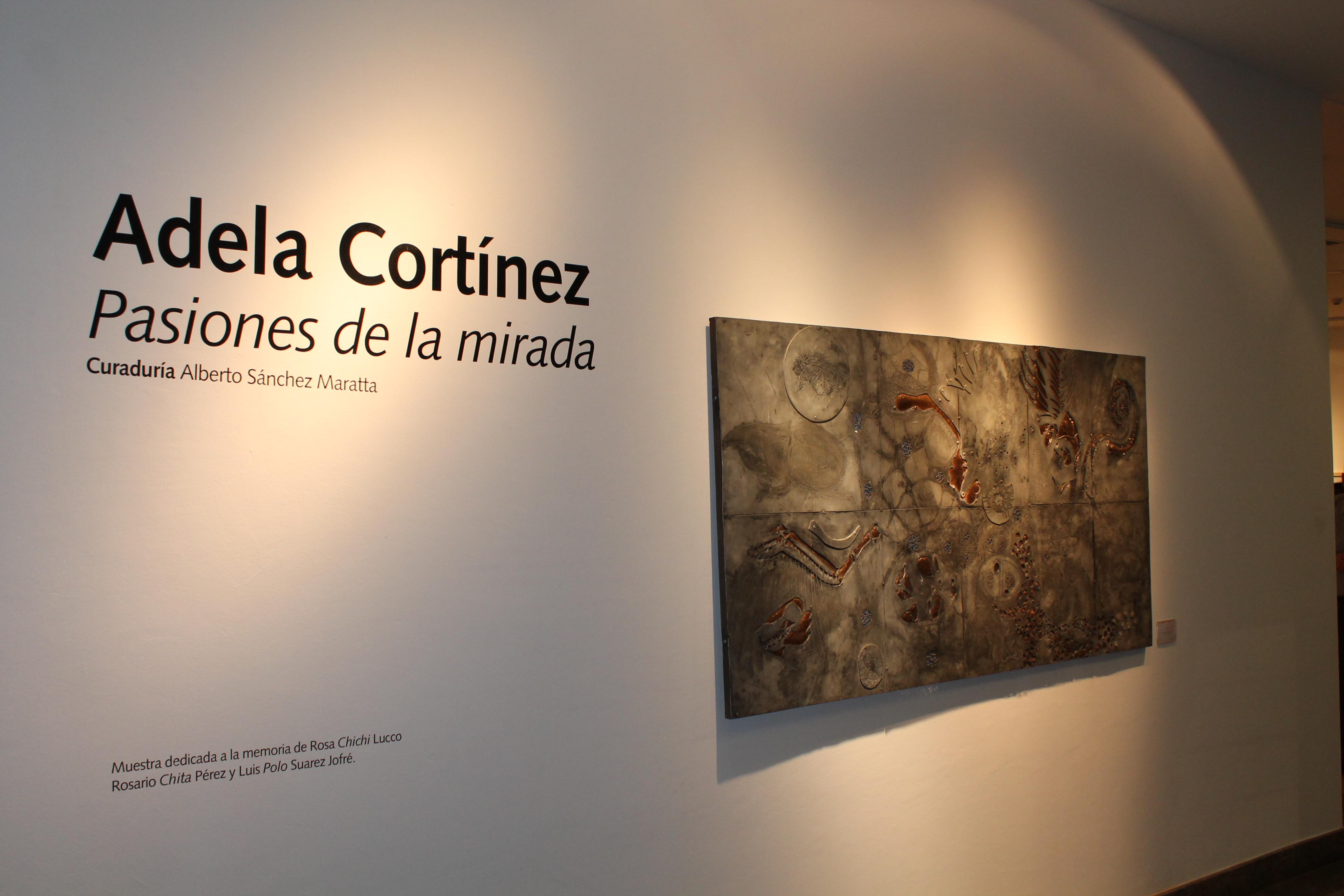 Pasiones de la mirada - Expo de A Cortínez