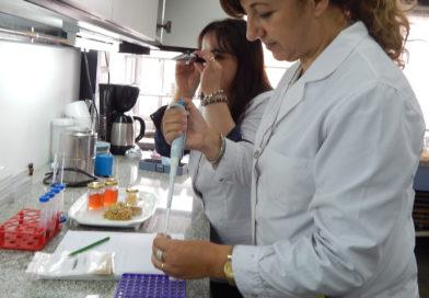 Utilizan residuos de la elaboración del dulce de membrillo para obtener productos de valor agregado