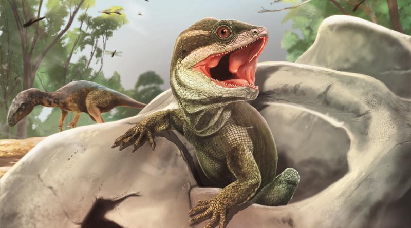 En Ischigualasto vivió el reptil origen de lagartos  y hoy aparece en la Revista Nature
